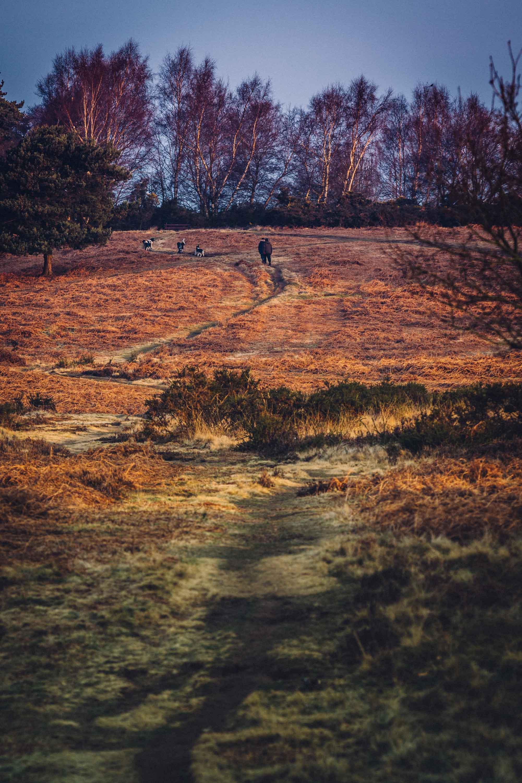 LANDSCAPE PHOTOGRAPHER IN BIRMINGHAM