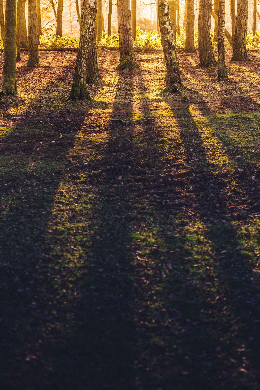 Landscape Photographer Birmingham